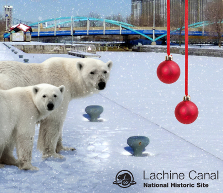 Parcs Canada – Campagne Twitter